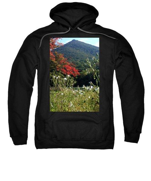 View Of Sharp Top In Autumn Sweatshirt