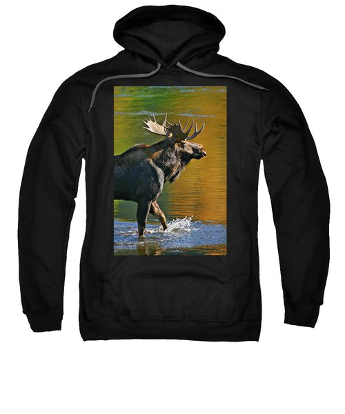 Wading Moose Sweatshirt