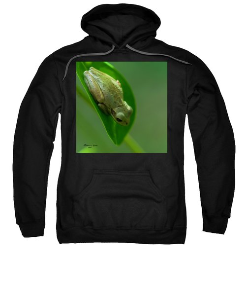 Wake Up Time Sweatshirt