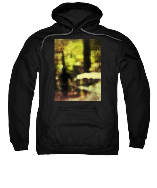 Walk In The Park Sweatshirt