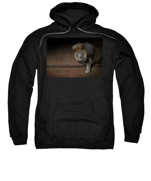 Was That My Cue? - Lion On Stage Sweatshirt