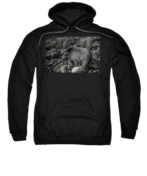 Watching Black Bear Sweatshirt