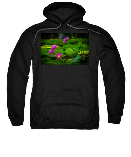 Waterlily Blossoms Sweatshirt