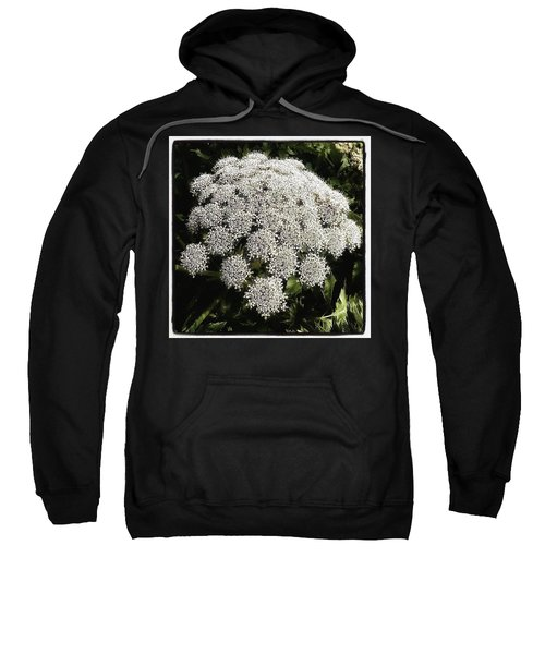 Sweatshirt featuring the photograph What Flower Is This? I Think It's by Mr Photojimsf