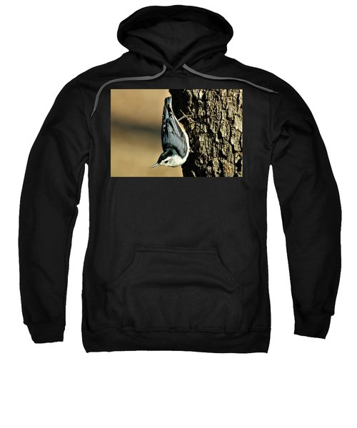 White-breasted Nuthatch On Tree Sweatshirt