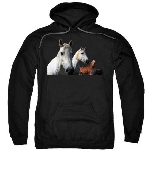 White Camargue Horses On Black Background Sweatshirt