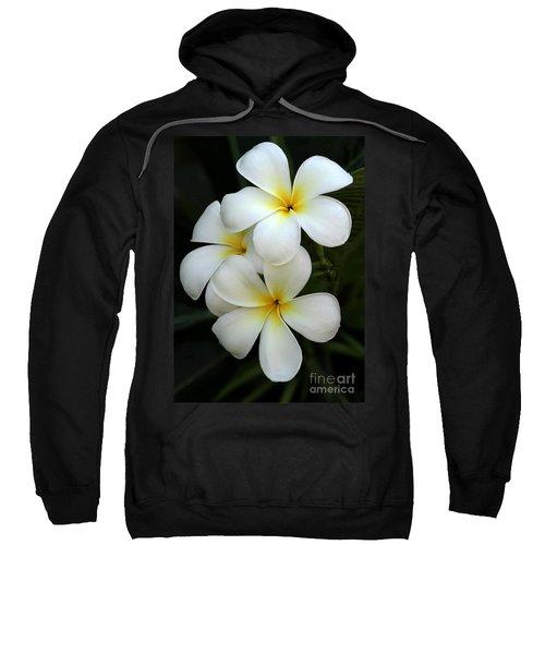 White Plumeria Sweatshirt