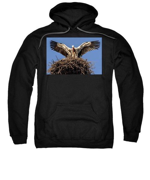 White Storks Of Fagagna 7 Sweatshirt