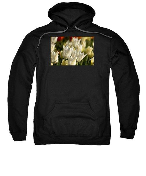 White Triumphator Sweatshirt