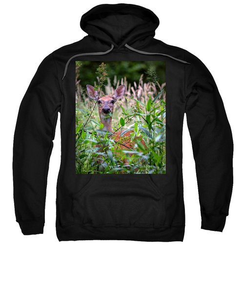 Whitetail Doe Sweatshirt