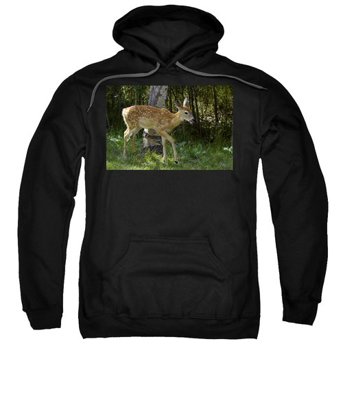 Whitetail Fawn Sweatshirt