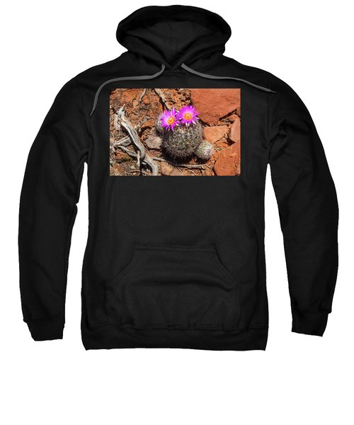 Wild Eyed Cactus Sweatshirt