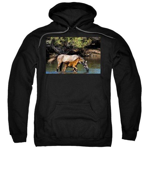 Wild Horses On The Salt River Sweatshirt