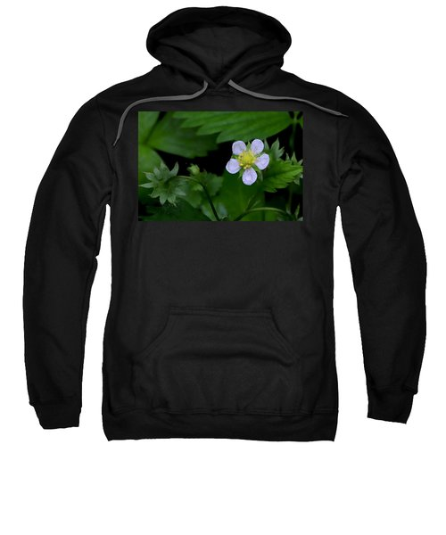 Wild Strawberry Blossom And Raindriops Sweatshirt