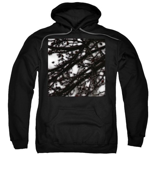 Winter Rain Sweatshirt