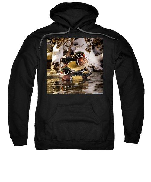 Wintering Wood Ducks Sweatshirt