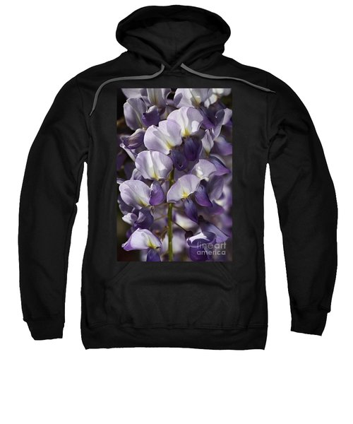 Wisteria In Spring Sweatshirt