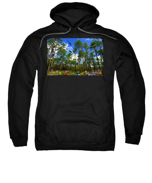 Withlacoochee State Forest Nature Collage Sweatshirt