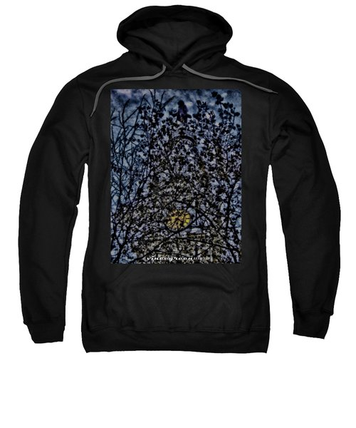 Wm Penn's Woods Sweatshirt