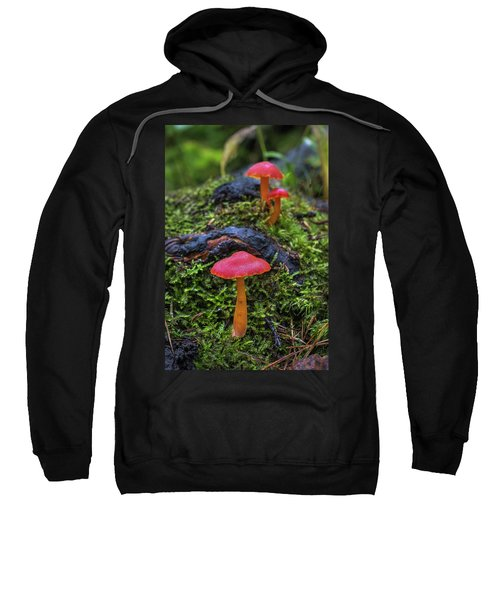 Sweatshirt featuring the photograph Woodland Floor Decor by Bill Pevlor
