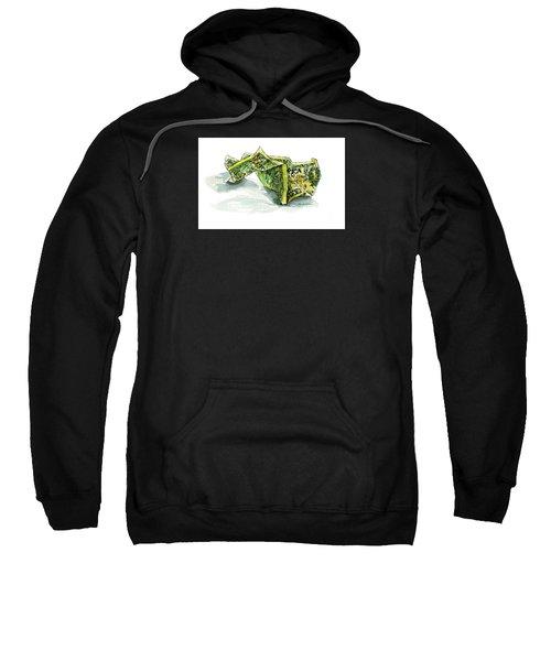Wrinkled Dollar Sweatshirt
