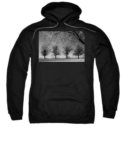 x4 Sweatshirt
