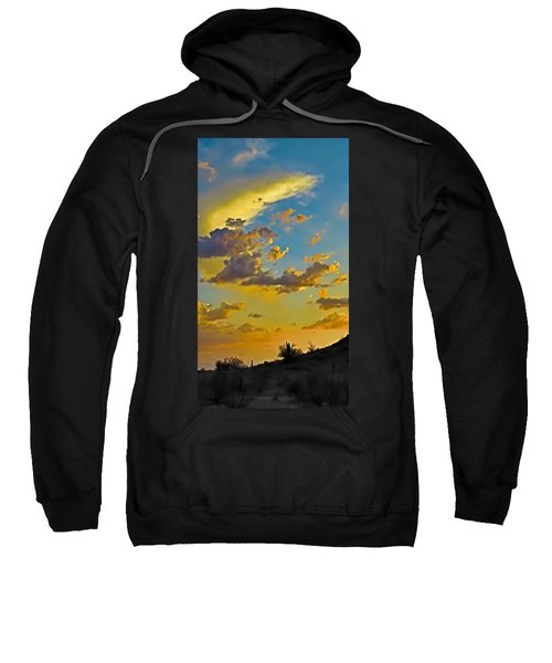 Y Cactus Sunset 10 Sweatshirt