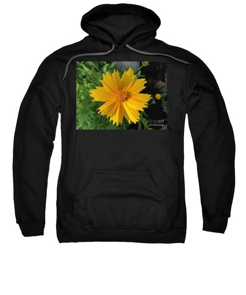 Yellow Delight Sweatshirt