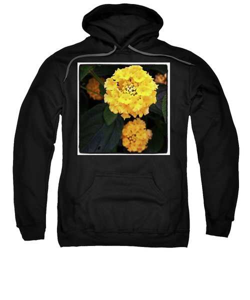 Sweatshirt featuring the photograph Yellow Lantanas Along The Scenic Drive by Mr Photojimsf