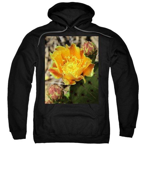 Yellow Prickly Pear Cactus Sweatshirt