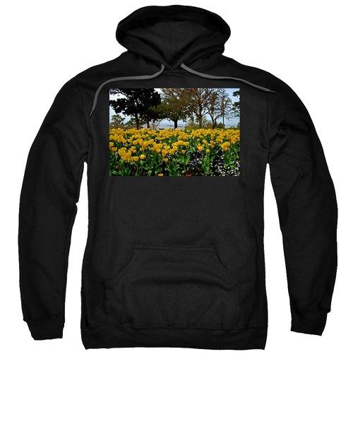 Yellow Tulips Of Fairhope Alabama Sweatshirt