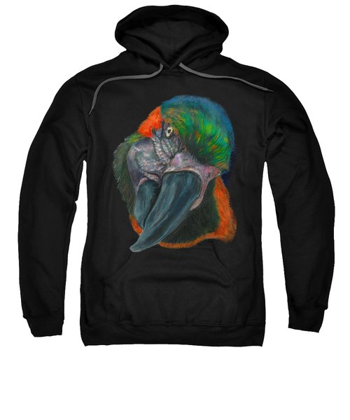 You Looking At Me Sweatshirt by Tricia Winwood