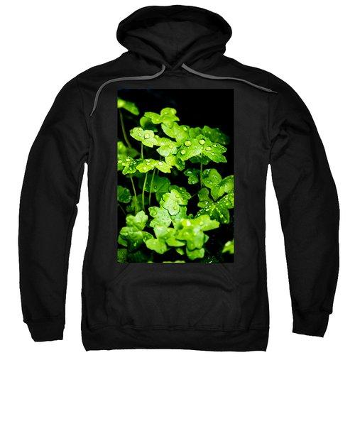 Zen Waterdrops Sweatshirt