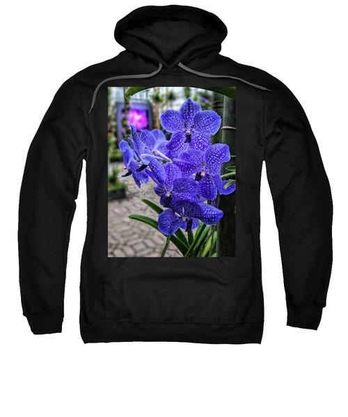 Deep Purple Orchid Sweatshirt