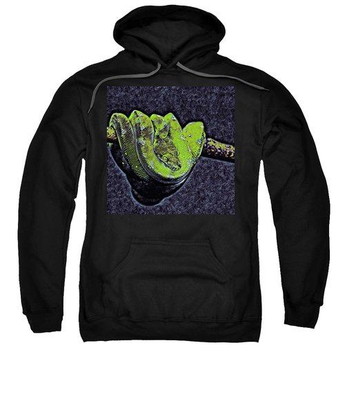 Emerald Tree Boa Sweatshirt