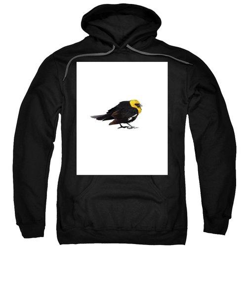 Yellow Headed Blackbird   Sweatshirt