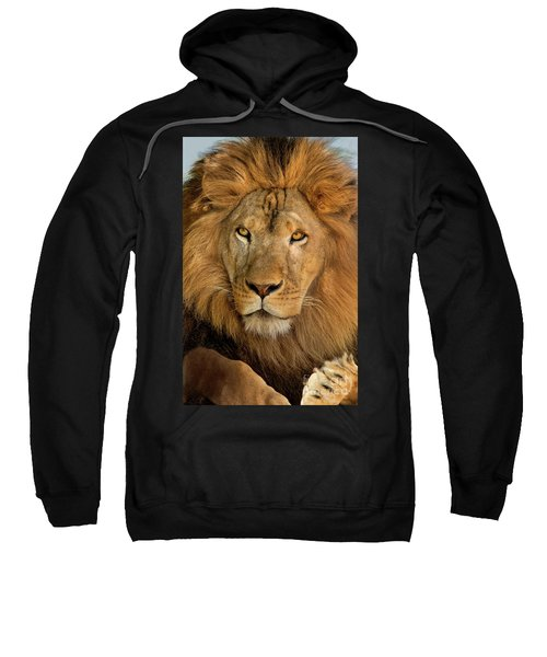 656250006 African Lion Panthera Leo Wildlife Rescue Sweatshirt