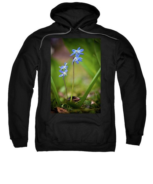 Animated Sweatshirt