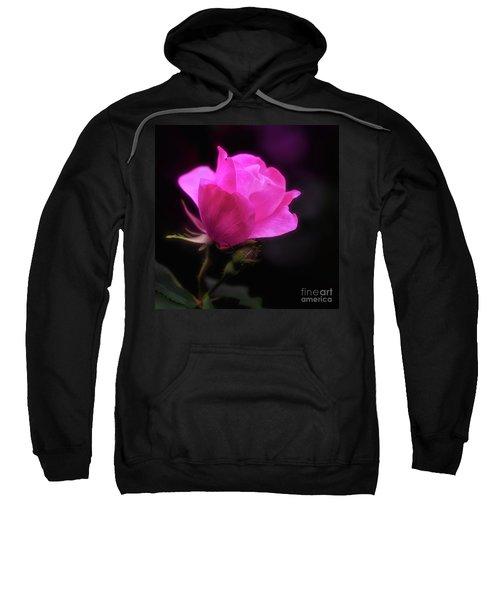 Anniversary Rose Sweatshirt