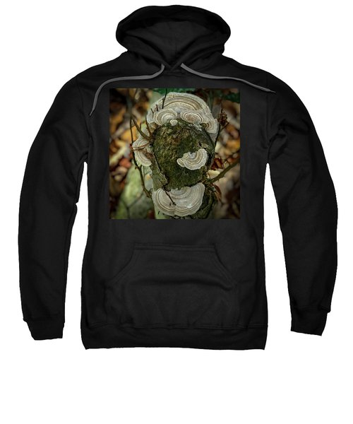Another Fungus Sweatshirt