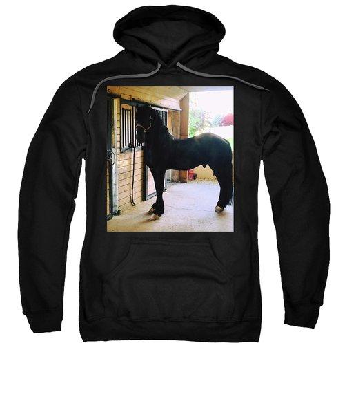 Apollo's Light Sweatshirt