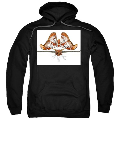 Atlas Moth3 Sweatshirt