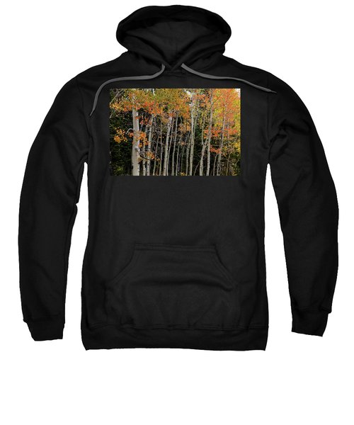 Sweatshirt featuring the photograph Autumn As The Seasons Change by James BO Insogna