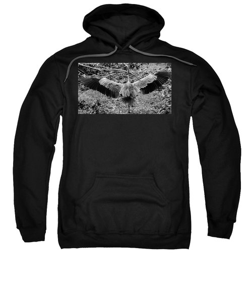 Time To Spread Your Wings Sweatshirt