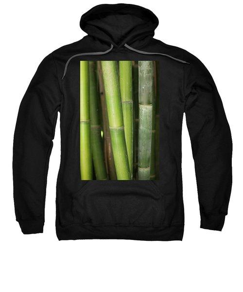 Bamboo Stalk 4057 Sweatshirt