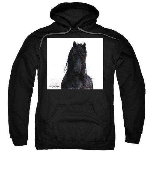 Black Pearl Gaze Sweatshirt