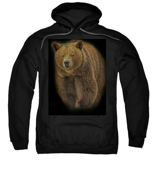 Brown Bear In Darkness Sweatshirt