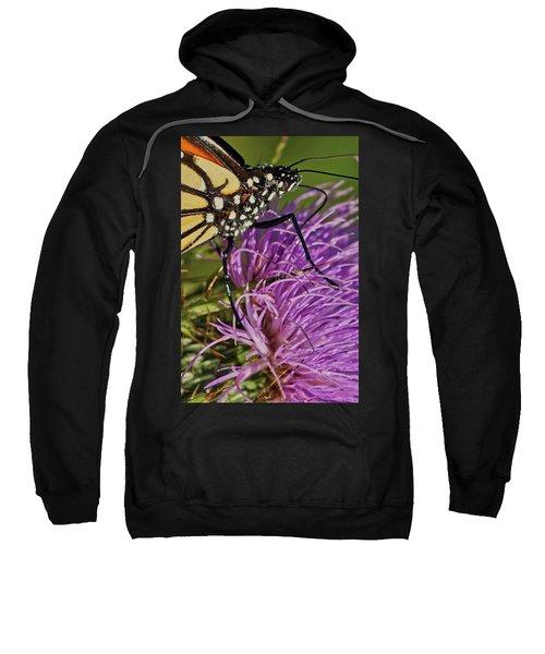 Butterfly Closeup Vertical Sweatshirt