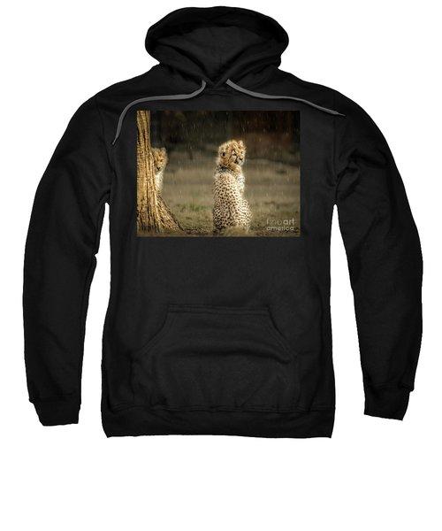 Cheetah Cubs And Rain 0168 Sweatshirt