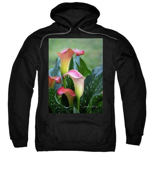 Colorful Spring Flowers Sweatshirt